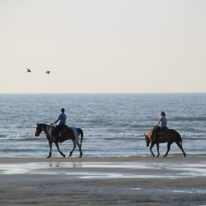 Riding on the Beach at D and J Stables